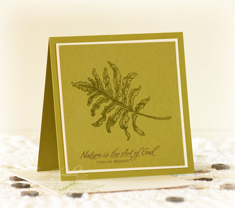 SD Autumn Fern Card Set4