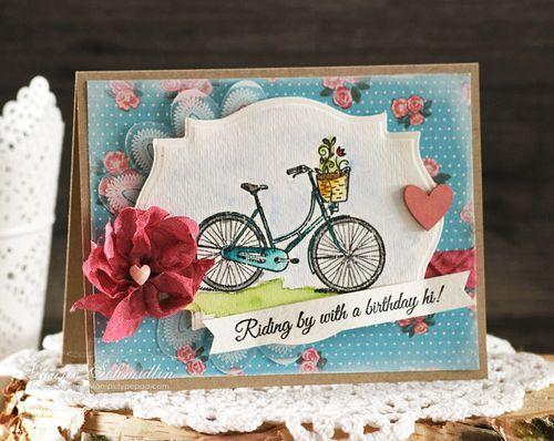 Birthday Hi by Laurie Schmidlin