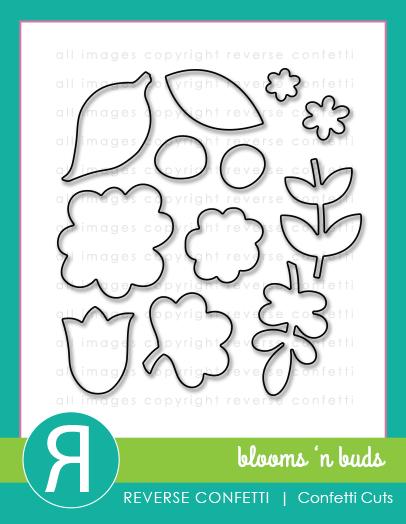 BloomsNBudsCCProductGraphic