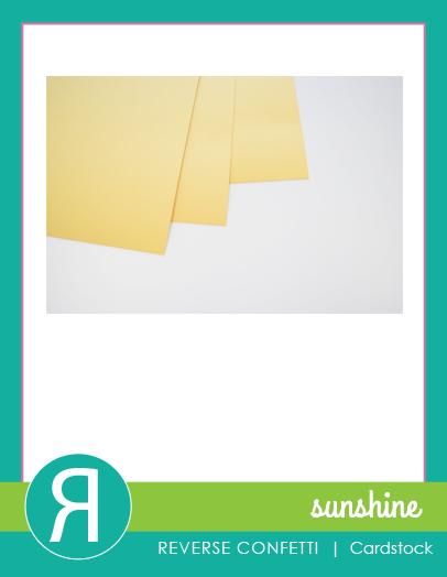SunshineCS_ProductGraphic