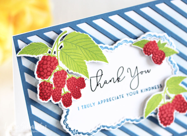 Papertrey-Appreciate_Your_Kindness_Detail1-Laurie_Schmidlin