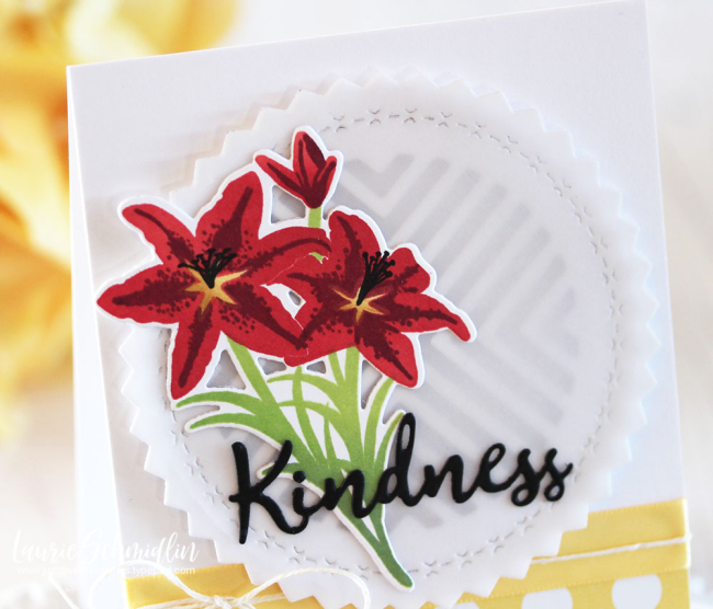 Laurie Schmidlin - Kindness Changes Everything